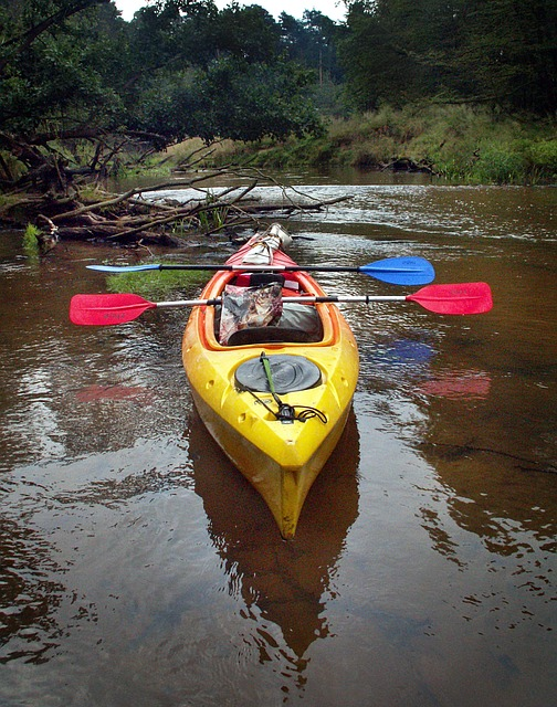 kayak-1560642_640